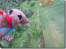 Virgin Balloon Flights - Meandering Meerkats