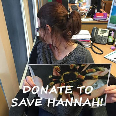 Fundraising to help save Hannah