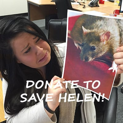 Fundraising to help save Helen