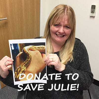 Fundraising to help save Julie