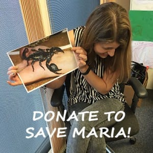 Fundraising to help save Maria