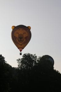 Lion balloon Longleat Safari
